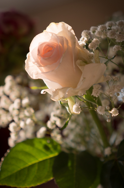 fiori matrimonio giugno