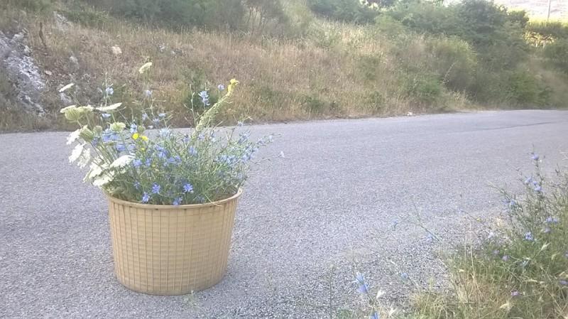 matrimonio green: fiori